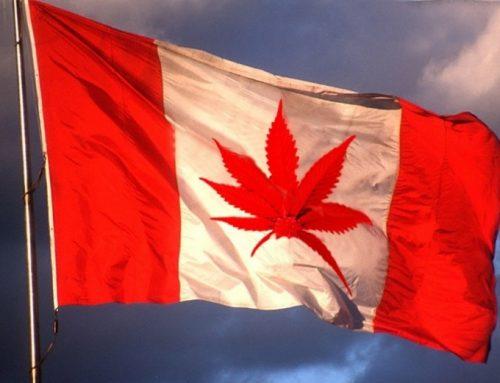 A pesar de la cautela, la venta de cannabis en Canadá marcha muy bien