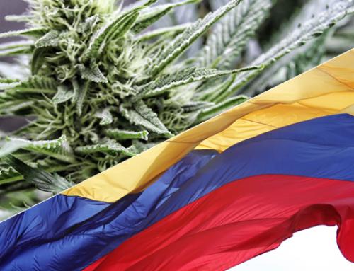 Una empresa exporta legalmente desde Colombia