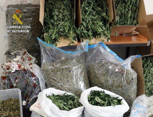 Cae una banda criminal con 11 detenidos que exportaban marihuana a Europa